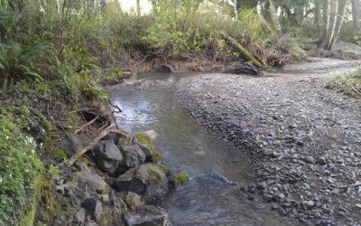 Jenner Gulch and Sheephouse Creek