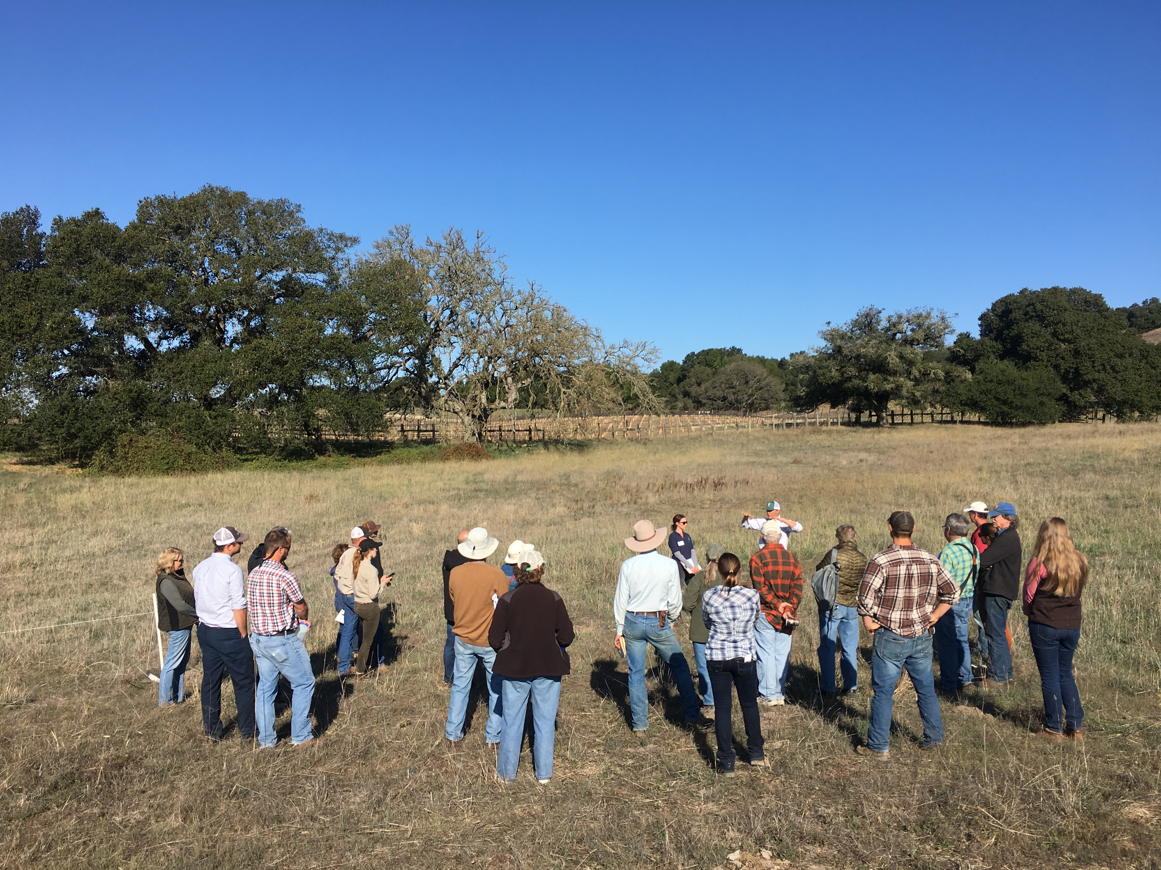 Cows, Compost and Carbon rangeland workshop.
