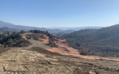 Fire Recovery Resources Page