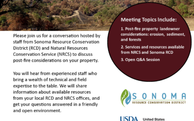 Post-Fire Considerations for Landowners: Q&A Session